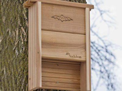 Audubon Bat Shelter Nabat
