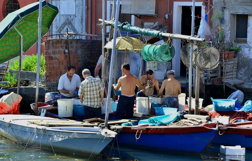Fishermen unload seafood