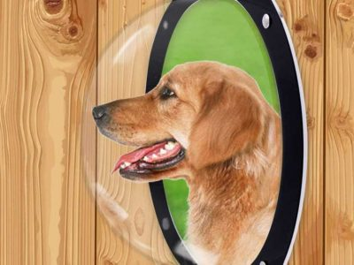 H&B Luxuries Durable Acrylic Dome Dog Window for Fence