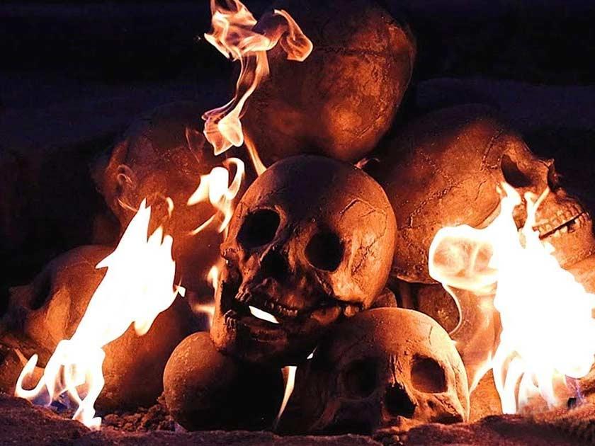 Myard FirePit Skull Log