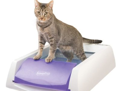 PetSafe ScoopFree Cat Litter Box