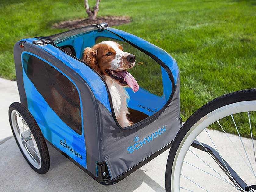 Schwinn Rascal Bike Trailer for Dogs