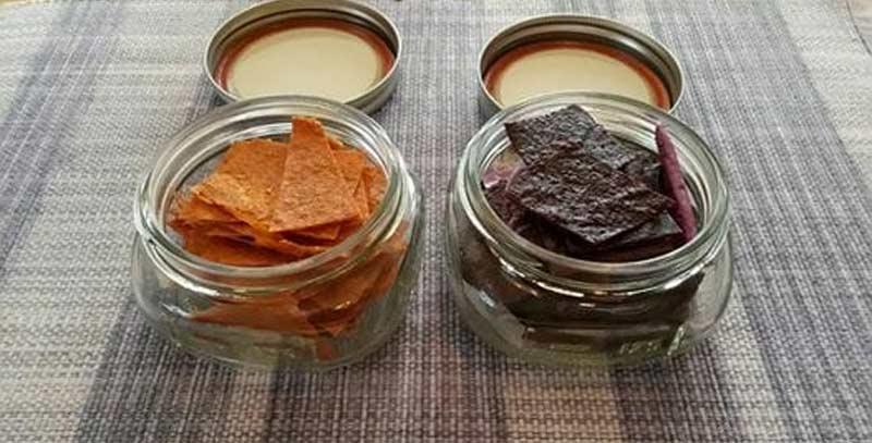 fruit leather dehydrator treats