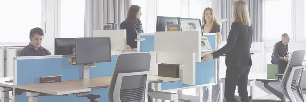 office with regular and standing desks