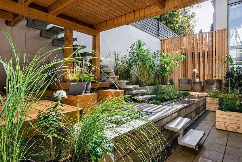 plants on patio