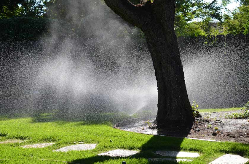 sprinklers in action on lawn